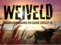Events @ Weiveld